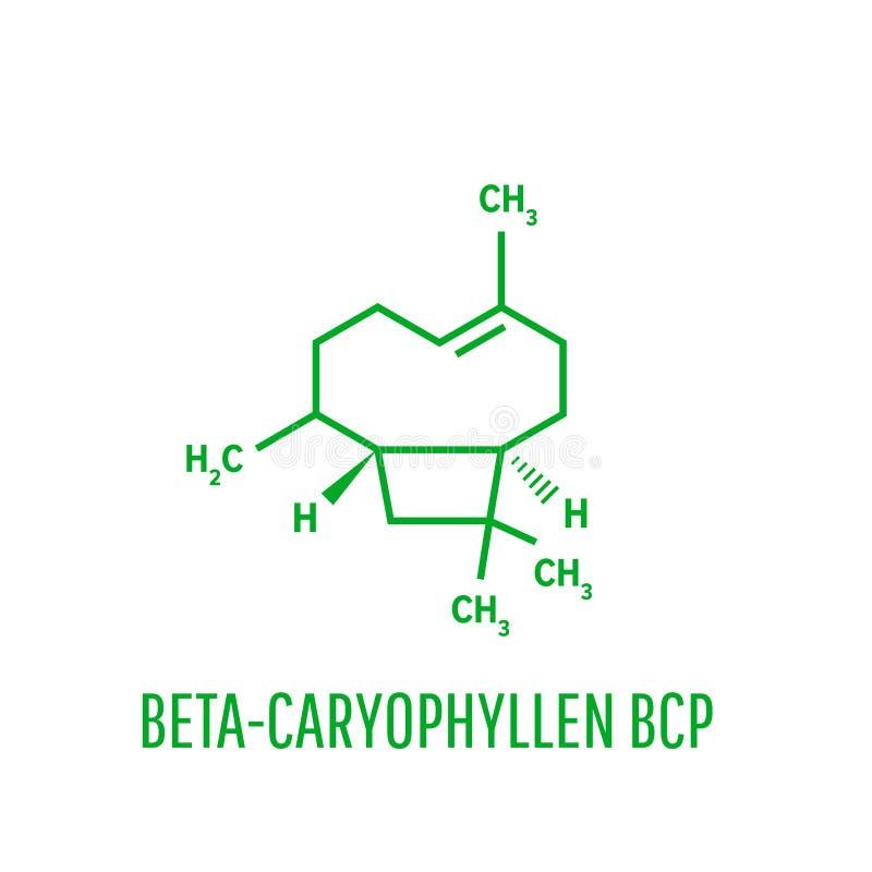 Молекула Caryophyllene Состав множественных травяных эфирных масел, включая гвоздичное масло Скелетная формула иллюстрация штока