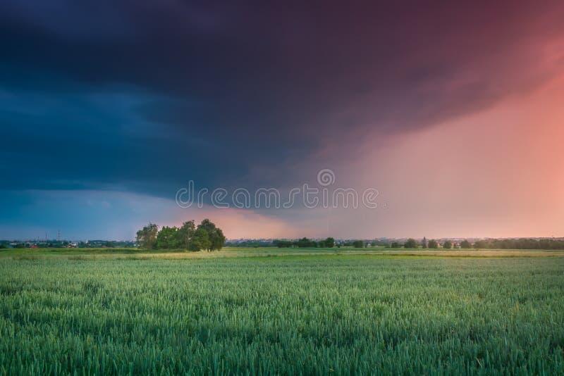 Молнии на Люблине во время одного из штормов в 2017 стоковое фото