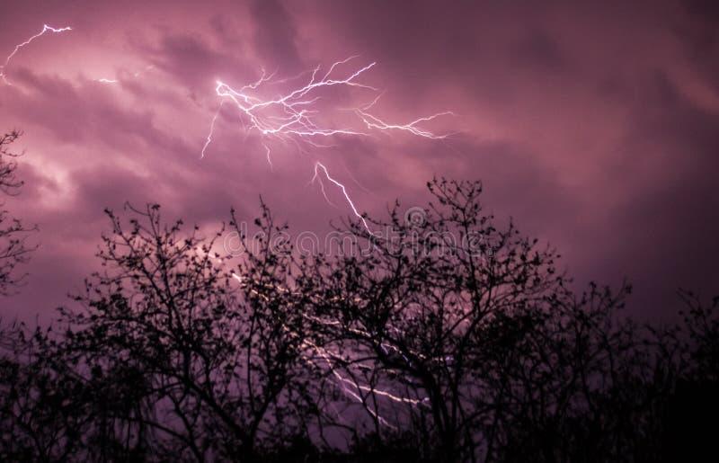 Молния на пурпурном небе стоковые изображения