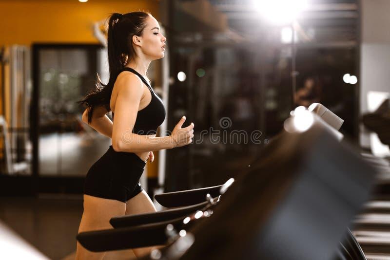 Молодая атлетическая темн-с волосами девушка одетая в черных спорт верхних и калориях ожогов шортов на третбане стоковые изображения rf