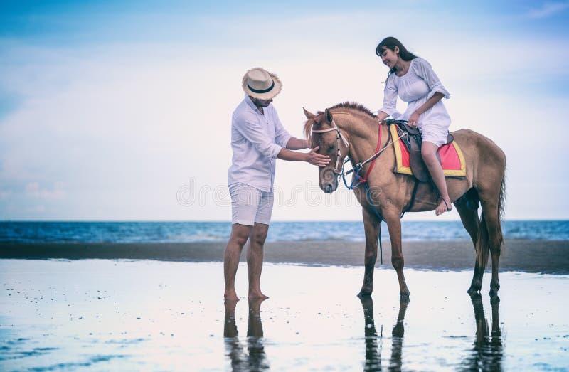 Молодая верховая лошадь пар на береге моря стоковое фото