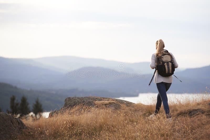 Молодая взрослая кавказская женщина самостоятельно на горном пике, заднем взгляде стоковые фотографии rf