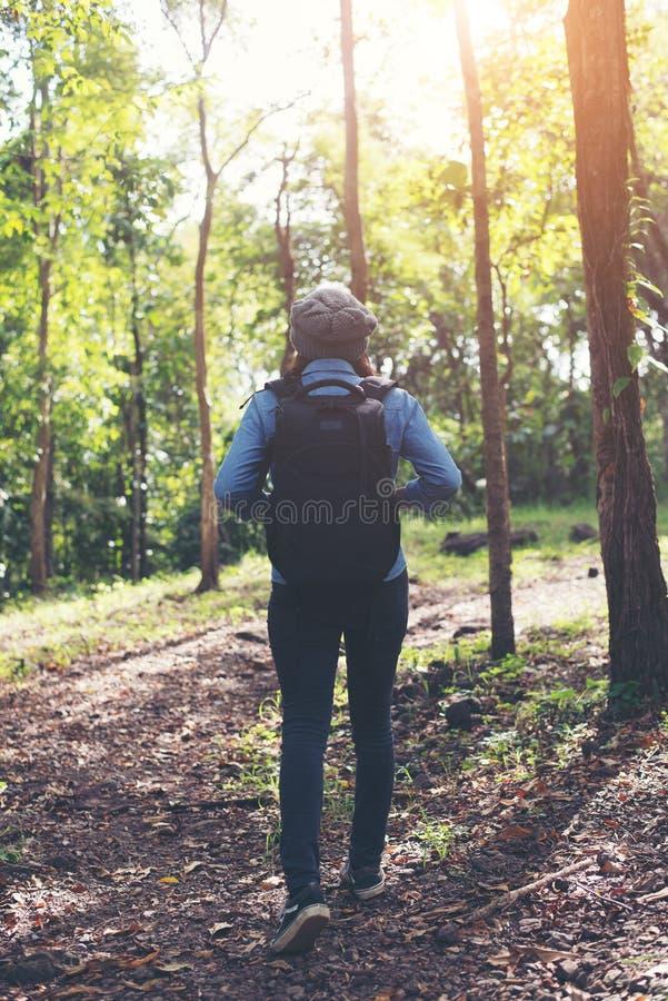 Молодая женщина битника с рюкзаком идя в лес, вид сзади стоковое фото rf