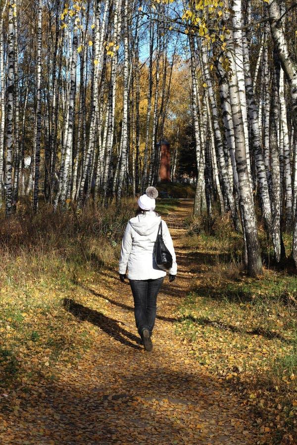 Молодая женщина в белой куртке идет вдоль пути через рощу березы стоковое изображение rf