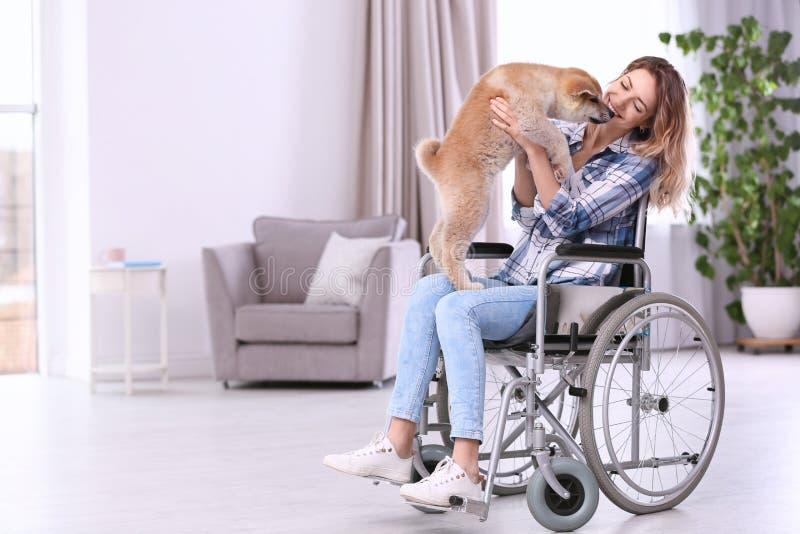 Молодая женщина в кресло-коляске с щенком стоковые фотографии rf