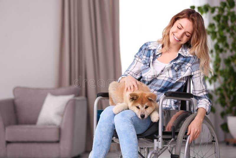 Молодая женщина в кресло-коляске с щенком на стоковые изображения