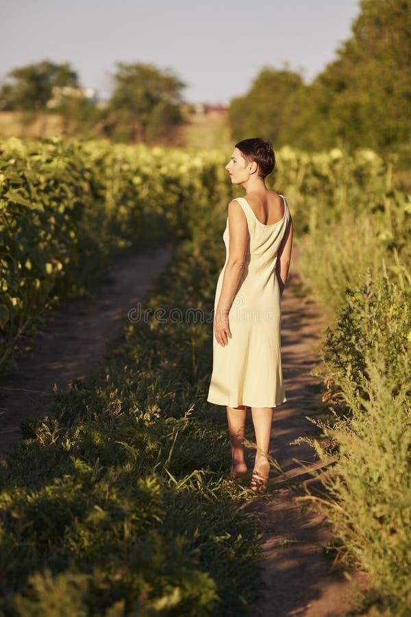 Молодая женщина в поле солнцецветов на заходе солнца стоковая фотография rf