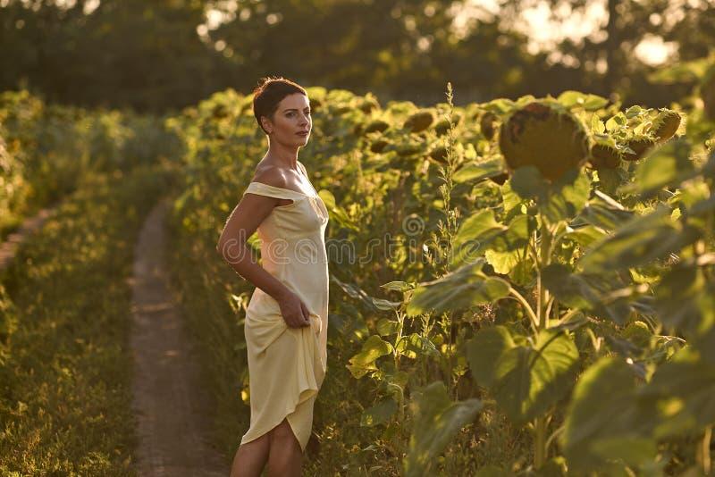 Молодая женщина в поле солнцецветов на заходе солнца стоковые фотографии rf