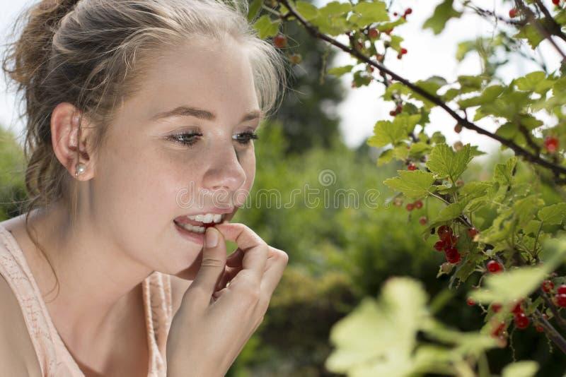 Молодая женщина ест ягоду от куста ягоды в саде в ее рте стоковое изображение
