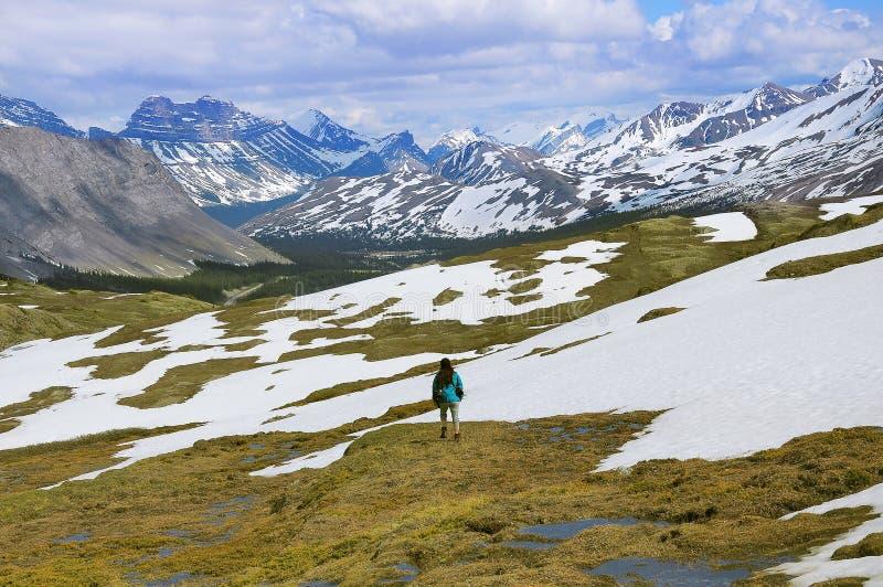 Молодая женщина идет в канадские скалистые горы стоковые изображения
