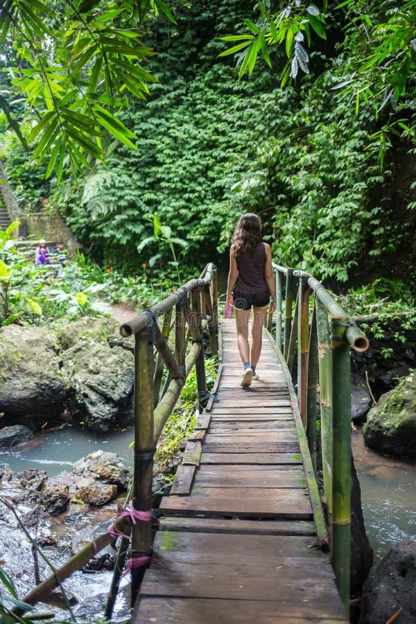 Молодая женщина идя на висячий мост над потоком Wainibau, прогулкой Lavena прибрежной, островом Taveuni, Фиджи Taveuni стоковые изображения rf