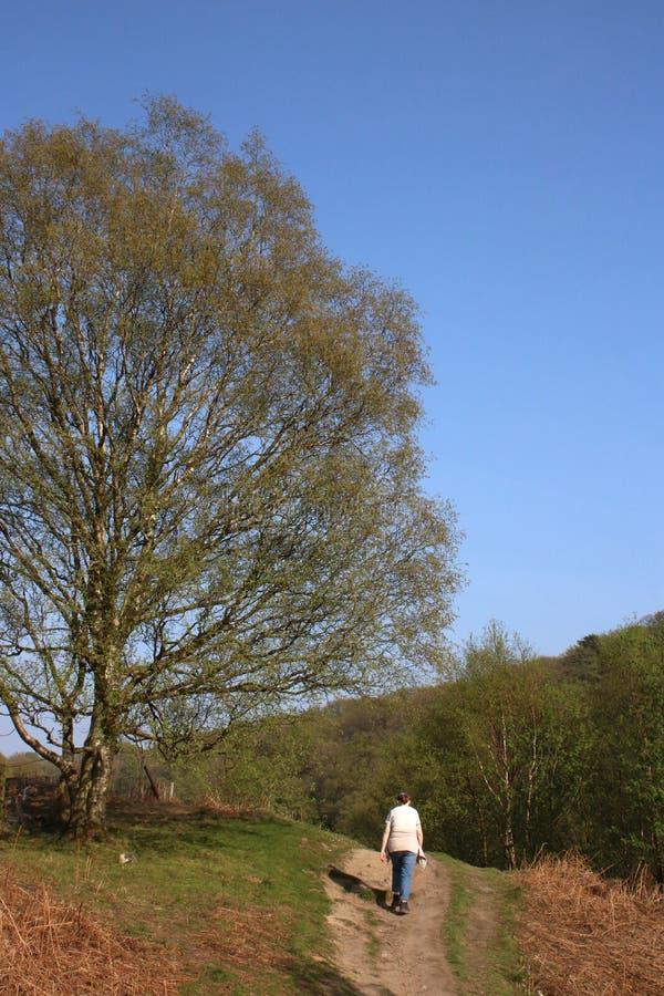 Молодая женщина идя на тропу coutryside весной стоковое изображение