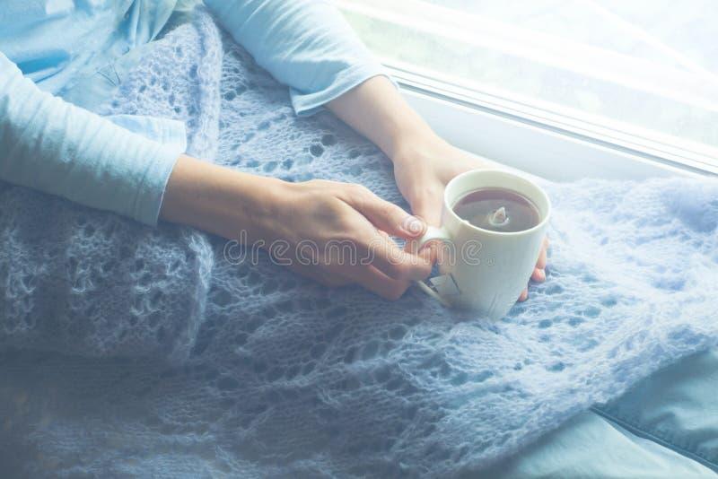 Молодая женщина наслаждаясь ее кофе или чаем утра, смотря вне окно Красивый романтичный непознаваемый выпивать девушки горячий стоковое изображение rf