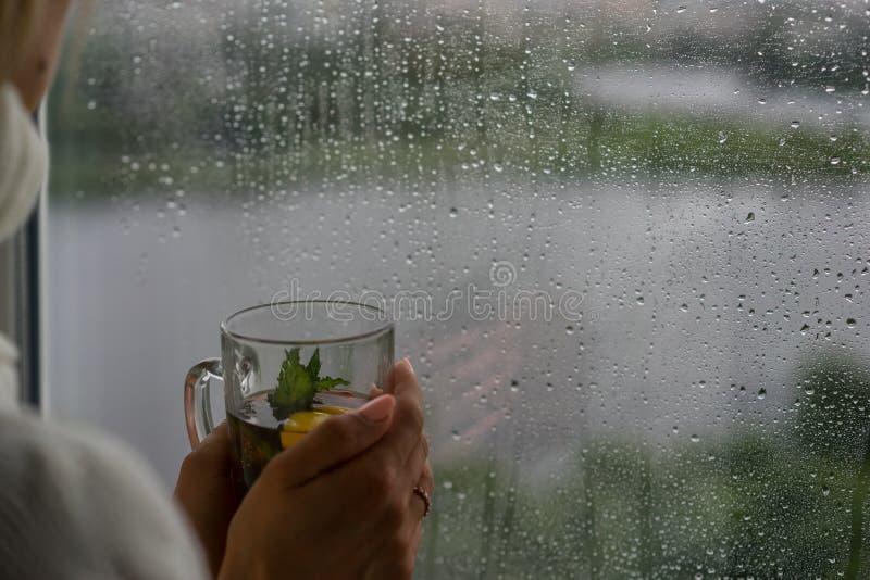 Молодая женщина наслаждаясь ее чаем утра, смотря вне ненастное окно Красивый романтичный непознаваемый выпивать девушки горячий стоковые фото