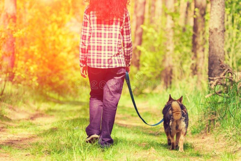 Молодая женщина при собака идя в лес стоковая фотография rf