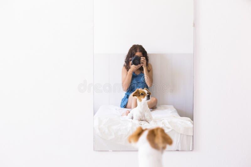 молодая женщина сидя на кровати и фотографируя с зеркальной камерой к ее милой небольшой собаке на зеркале daytime Образ жизни с стоковые изображения