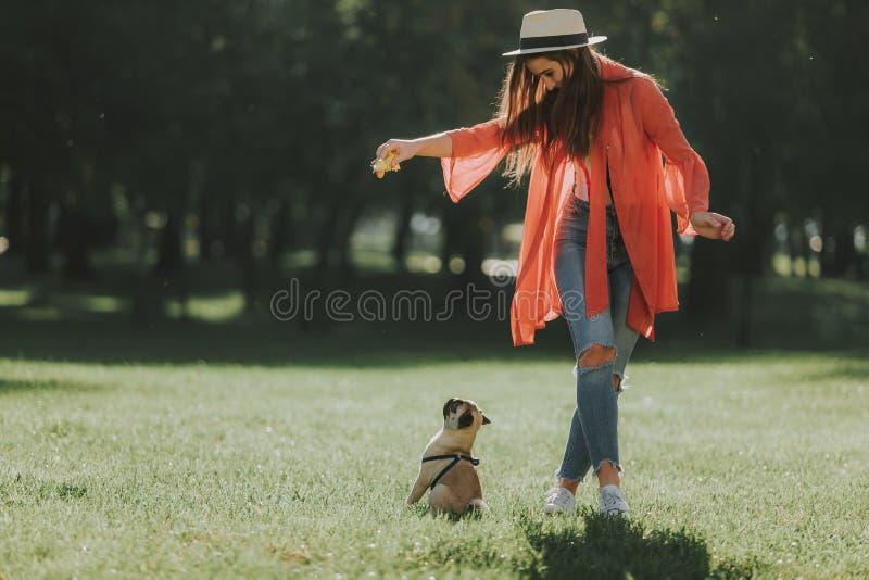 Молодая женщина тренирует ее славного щенка стоковое изображение