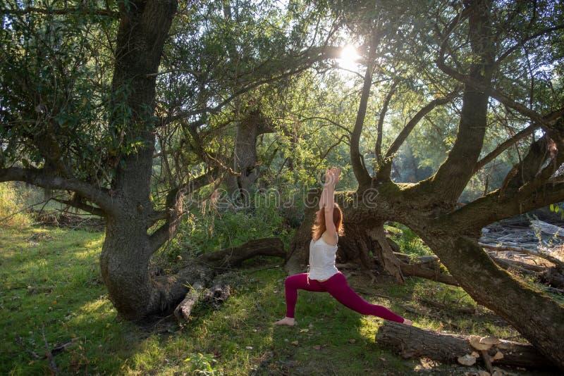 Молодая женщина redhead тренирует тренировки фитнеса йоги в sportswear в солнце в природе стоковые фото