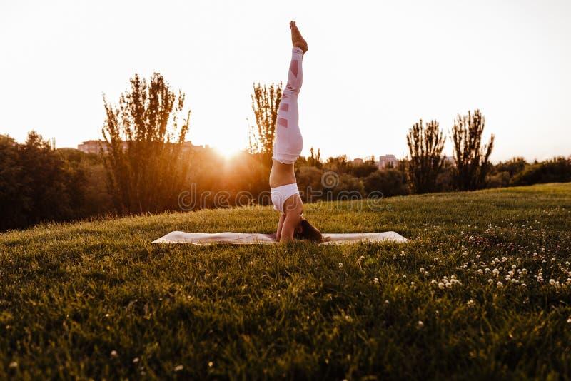 молодая красивая азиатская женщина делая йогу в парке на заходе солнца Йога и здоровая концепция образа жизни стоковое фото