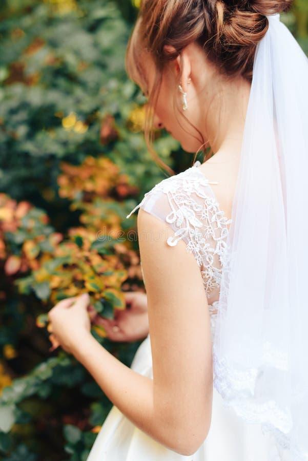 Молодая красивая невеста в природе летом 1 стоковые фото