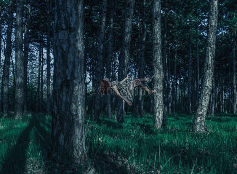 Молодая красная главная женщина levitating в сосновом лесе идя вверх хоботом сосны Покрашенные холодом унылые сумерки ночи стоковые фотографии rf