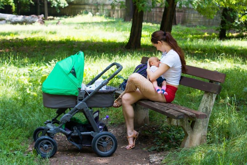 Молодая мать кормя ее милого младенца грудью, держа младенца нежно в руках и сидя на скамейке в парке, следующая зеленая прогулоч стоковое изображение rf