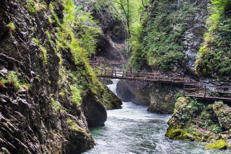 Молодая не определенная девушка идя на деревянный мост на каньоне ущелья Vintgar стоковая фотография