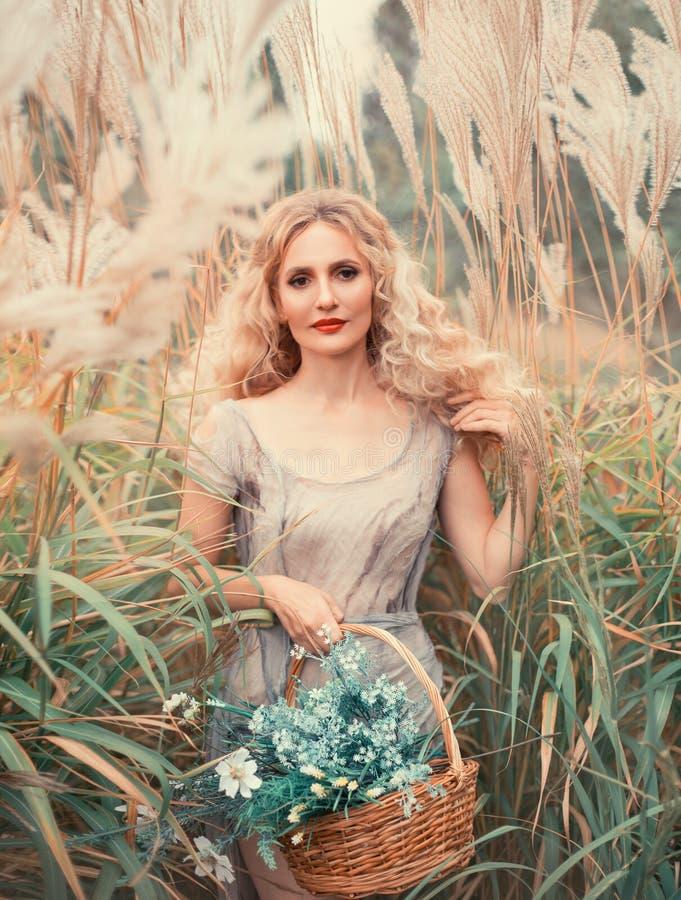 Молодая привлекательная девушка с белокурым вьющиеся волосы в светлом - серое старое платье с корзиной целебных трав в руке, дово стоковые изображения rf