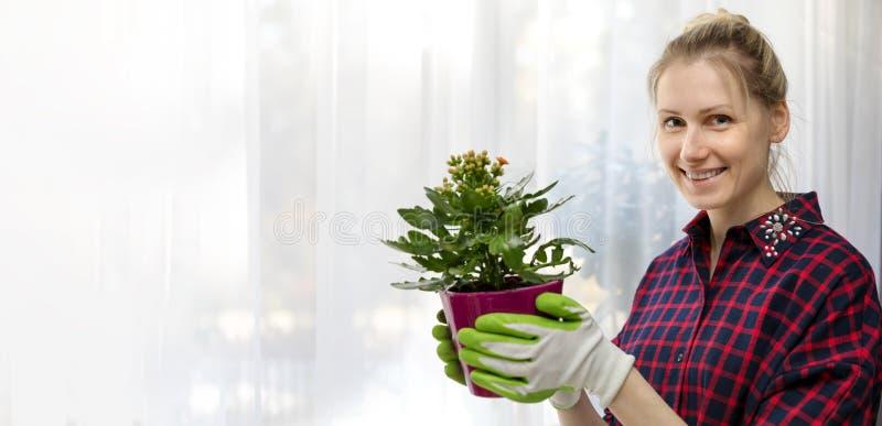 Молодая усмехаясь женщина держа цветочный горшок в руках внутри помещения стоковые изображения rf