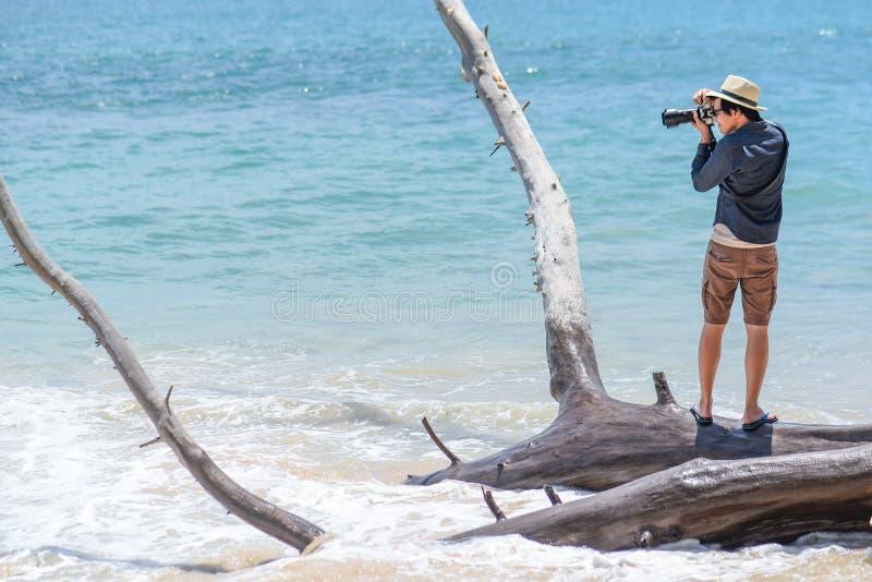 Молодой азиатский человек принимая фото на мертвом дереве на пляж стоковое фото