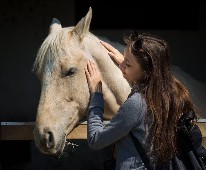Молодой брюнет относя дружески лошади стоковое фото