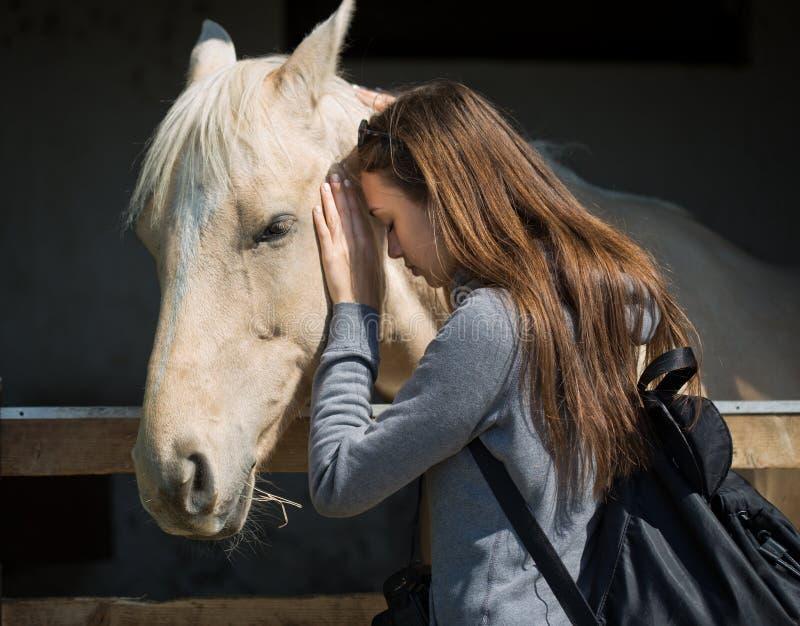 Молодой брюнет относя дружески лошади стоковые изображения