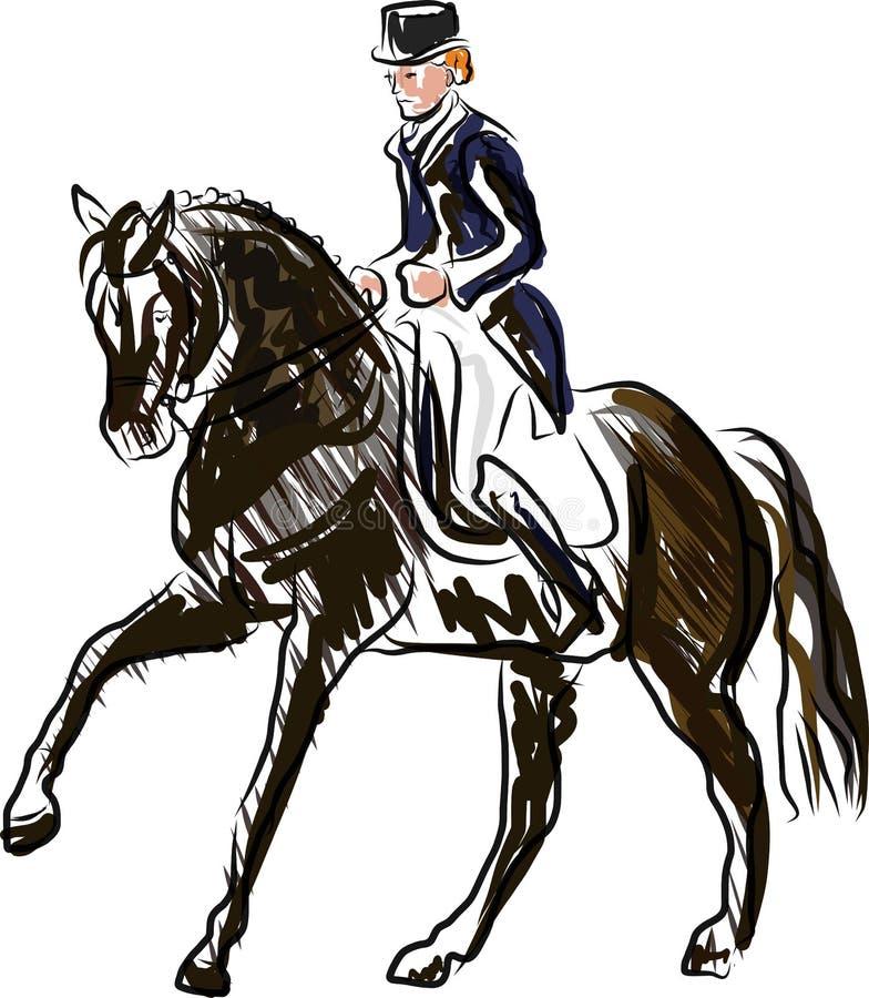 Молодой всадник выполняя скачку на лошади залива над барьером на скакать выставки иллюстрация штока