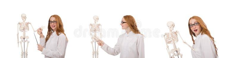 Молодой женский доктор со скелетом изолированным на белизне стоковые изображения