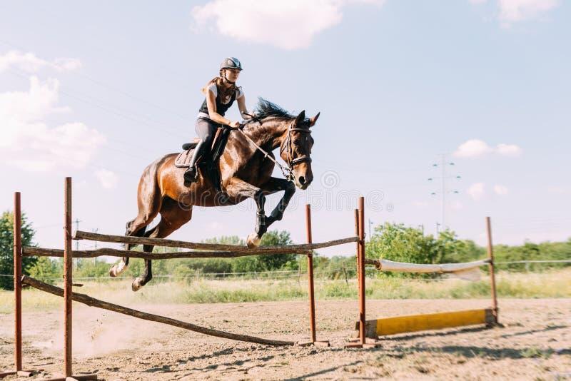 Молодой женский жокей на лошади перескакивая над барьером стоковые изображения