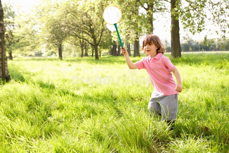 Молодой мальчик в поле с сетью насекомого стоковая фотография rf
