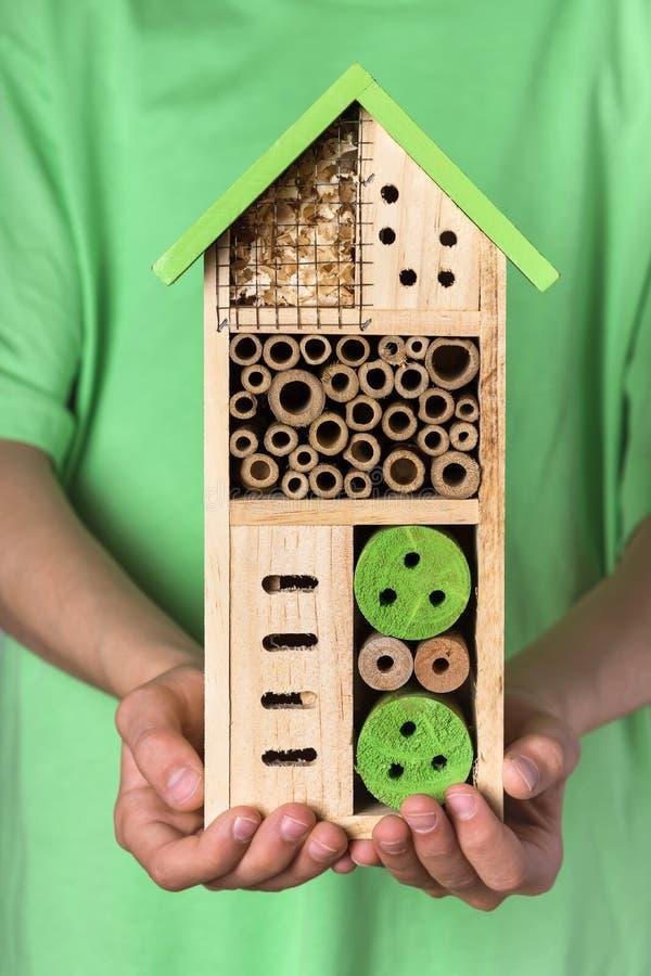 Молодой мальчик держа декоративную деревянную пчелу для различного ребенка насекомых стоковая фотография