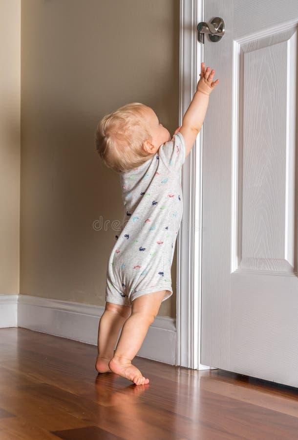 Молодой младенец как раз способный для того чтобы идти достигать вверх для ручки двери на деревянном поле стоковое изображение
