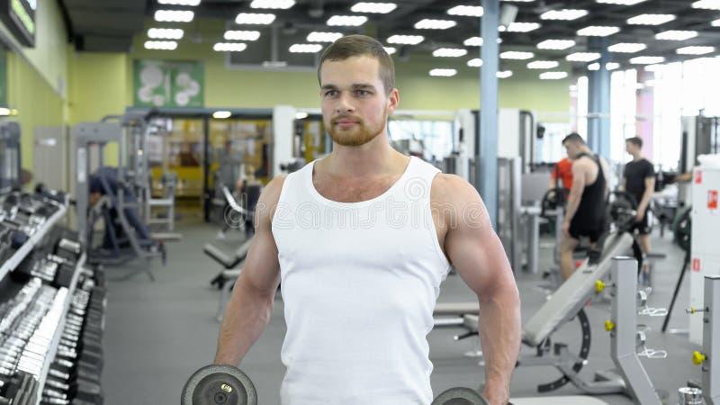 Молодой мышечный человек делая тренировку с гантелями в спортзале Портрет мужского культуриста на работать спортзала стоковая фотография rf