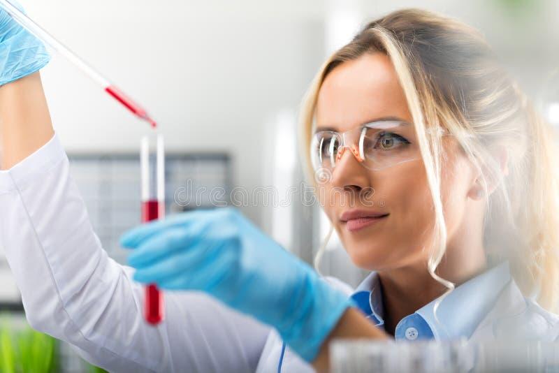 Молодой привлекательный женский ученый исследуя в лаборатории стоковая фотография rf