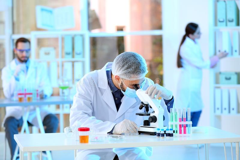 Молодой ученый работая с микроскопом в лаборатории стоковая фотография