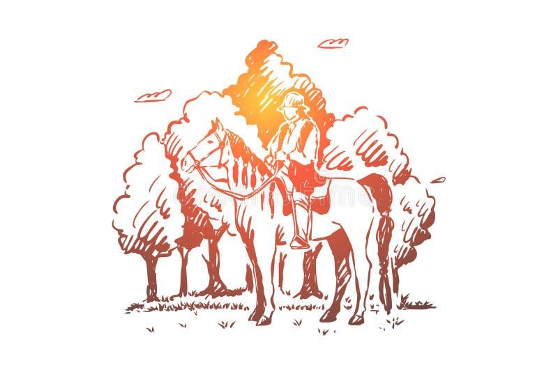 Молодой цыган сидя верхом, верховая лошадь roma в лесе, кочевнике в седловине, свободной нации, безликом наезднике в древесинах бесплатная иллюстрация