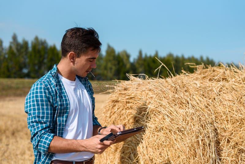 Молодой человек ботаника с планшетом оценивает урожай сена стоковое изображение