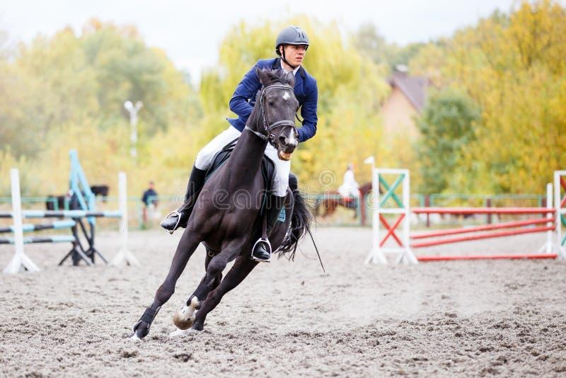 Молодой человек всадника скакать на лошади залива в осени стоковые фотографии rf