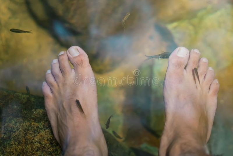 Молодой человек имея терапию спа рыб сурьмы и массаж ноги стоковые фотографии rf