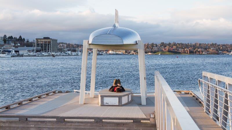 Молодой человек отдыхает под миниатюрным памятником около озера в середине большого города стоковые изображения