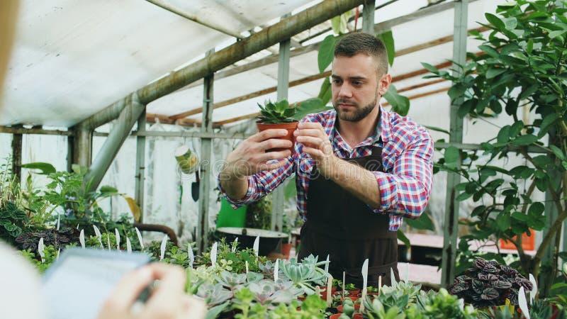 Молодой человек работая в садовом центре Привлекательные цветки проверки и отсчета парня используя планшет во время работы внутри стоковые фотографии rf