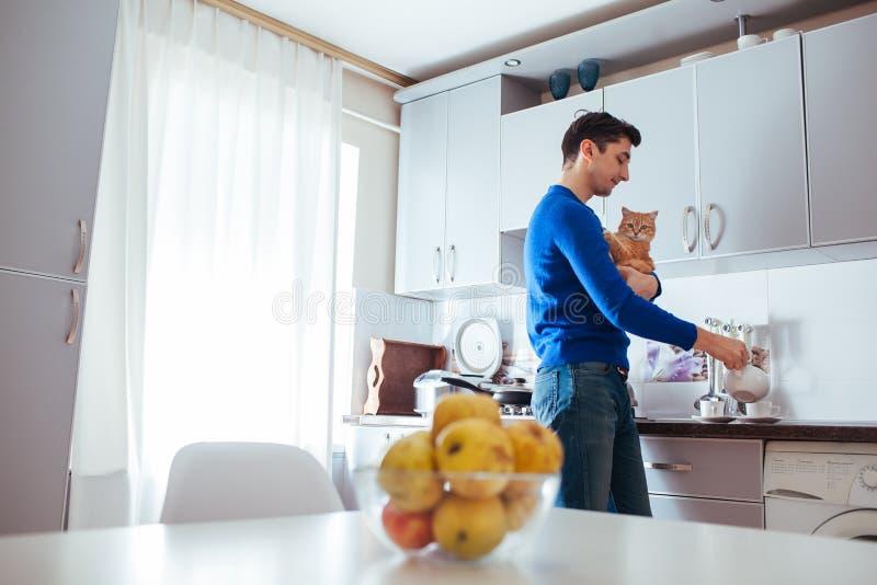 Молодой человек сделать чай на кухне с котом стоковые фотографии rf