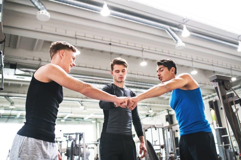 Молодые друзья стоя и говоря в современном спортзале crossfit, делая рему кулака стоковые изображения rf