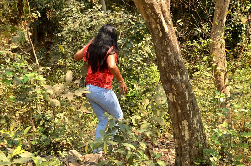 Молодые женщины в лесе стоковые изображения